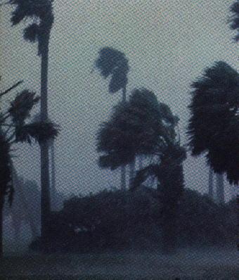 http://www.nyf.hu/others/html/kornyezettud/megujulo/SzelEnergia/Hurrikan.jpg