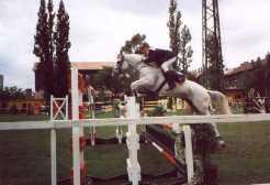 lóversenypálya (füves)
